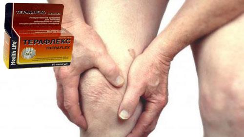 Терафлекс при боли в колене