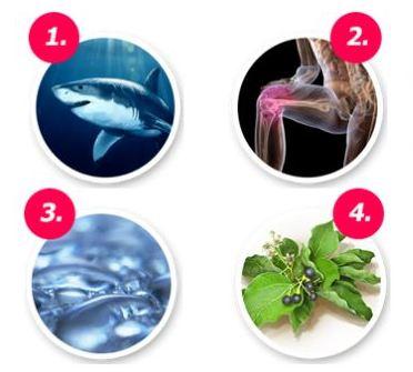 Компоненты крема акулий жир